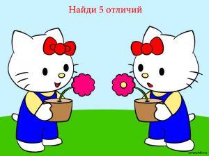 golovolomli-naydi-otlichie-24