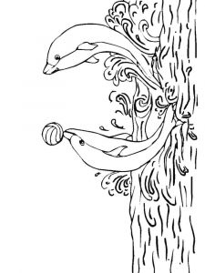 raskraska-delfin-17