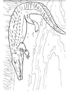 raskraska-krokodill-11