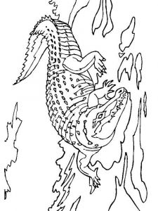 raskraska-krokodill-8
