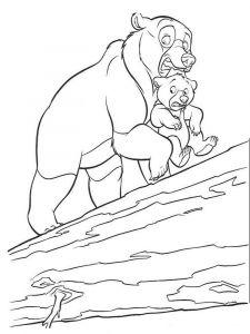 raskraska-medved-4