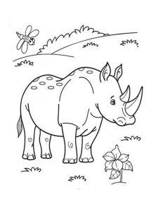 raskraska-nosorog-10