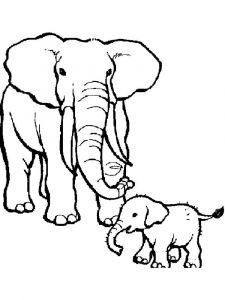 raskraska-slon-13