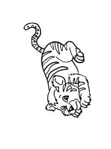 raskraska-tigr-16
