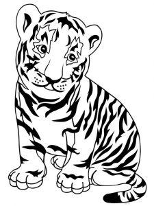 raskraska-tigr-5