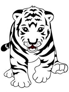 raskraska-tigr-6