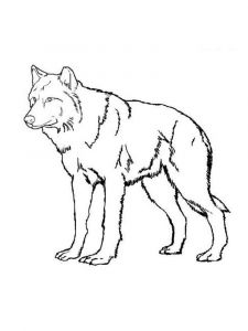 raskraska-volk-3