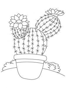 raskraski-cvety-kaktus-11