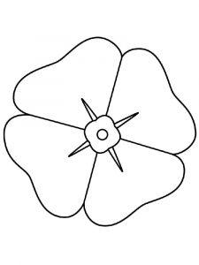 raskraski-cvety-mak-16