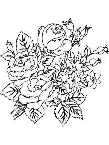 raskraski-cvety-pion-4