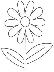 raskraski-cvety-romashki-1