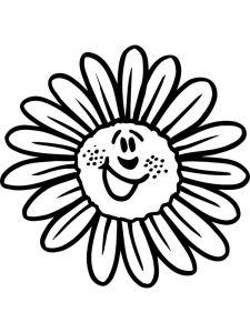 raskraski-cvety-romashki-6
