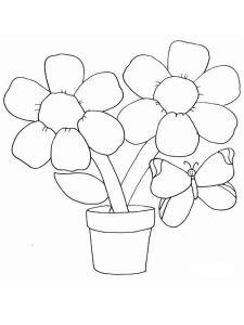 raskraski-cvety-romashki-7