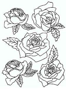 raskraski-cvety-rose-15