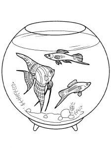 raskraski-dlja-detei-akvarium-1