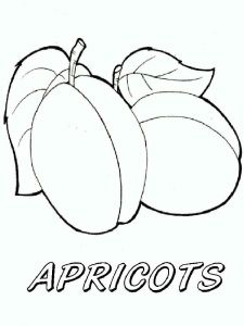 raskraski-frukty-abrikos-6
