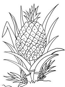 raskraski-frukty-ananas-4