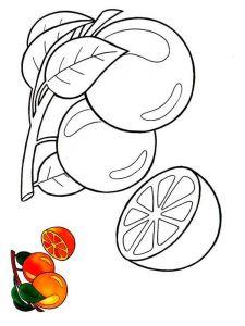 raskraski-frukty-apelsin-2