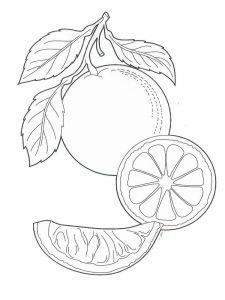 raskraski-frukty-apelsin-4