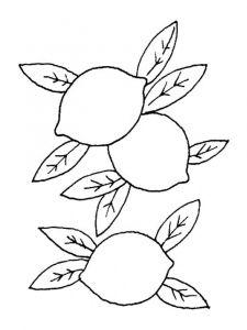 raskraski-frukty-limon-10