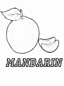 raskraski-frukty-mandarin-1