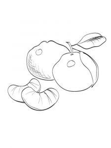 raskraski-frukty-mandarin-2