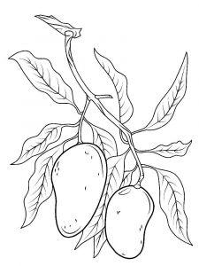 raskraski-frukty-mango-9