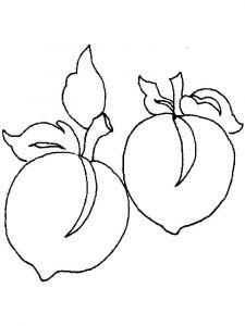 raskraski-frukty-persik-11