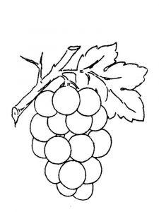 raskraski-frukty-vinograd-10