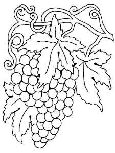raskraski-frukty-vinograd-12