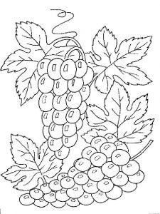raskraski-frukty-vinograd-13