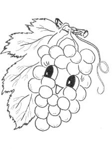 raskraski-frukty-vinograd-14