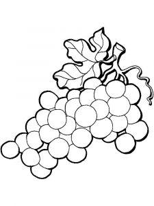 raskraski-frukty-vinograd-15
