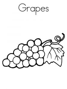 raskraski-frukty-vinograd-6