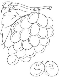raskraski-frukty-vinograd-8