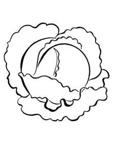 raskraski-kapusta-9