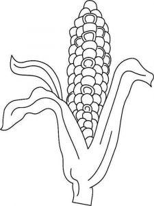raskraski-kukuruza-6