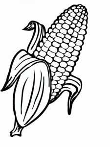 raskraski-kukuruza-7