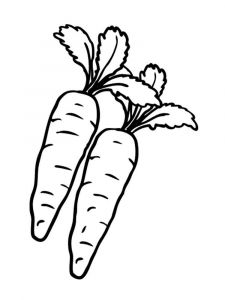 raskraski-morkovka-1