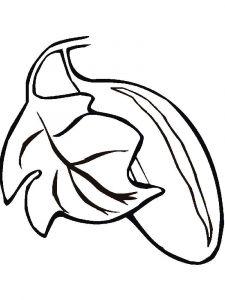 raskraski-ogurec-10