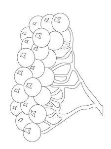 raskraski-yagoda-ryabina-11