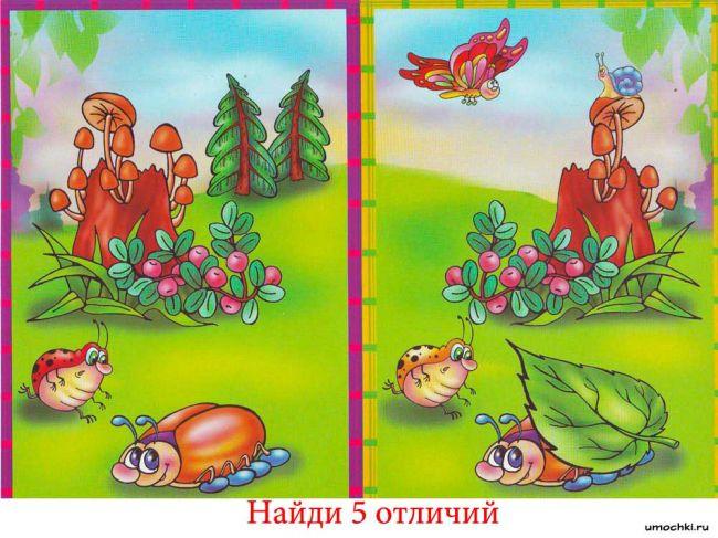 golovolomli-naydi-otlichie-12