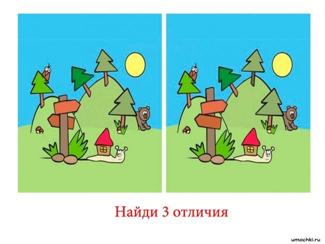 golovolomli-naydi-otlichie-20