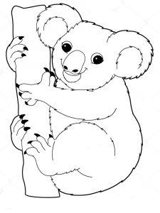 raskraska-Koala-12
