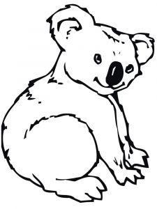 raskraska-Koala-3
