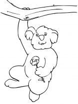 raskraska-Koala-5