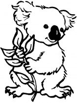 raskraska-Koala-6