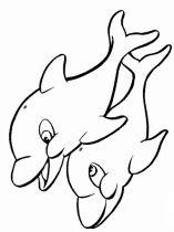 raskraska-delfin-11