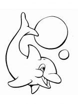 raskraska-delfin-12