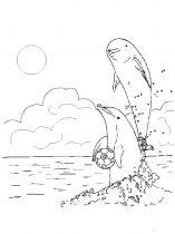 raskraska-delfin-3